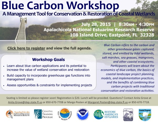 Blue Carbon workshop flyer_July 28