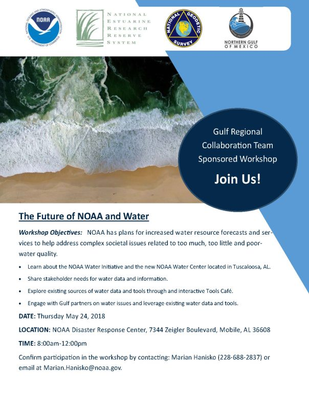 Water Initiatve Workshop (1)